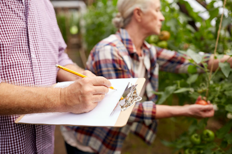 Pożytki naturalne z nieruchomości wchodzą do majątku wspólnego